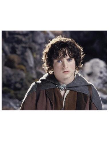 Collar Hobbit Dayoshop 13,900.00