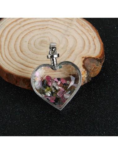 Collar Corazón Encapsulado Dayoshop 33,900.00